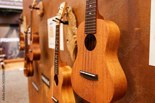 Fototapeta A view of several wooden ukulele guitars hanging on the wall of a music store
