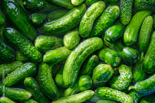 Preparations for pickling cucumbers in the village #333310647