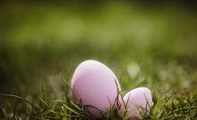 Two Easter Eggs Grass