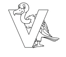 Animal Alphabet. Capital Letter V, Vulture. Vector Illustration. For Pre School Education, Kindergarten And Foreign Language Learning For Kids And Children. Coloring Page And Books, Zoo Topic.