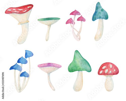 Photo Set of 8 watercolor mushrooms