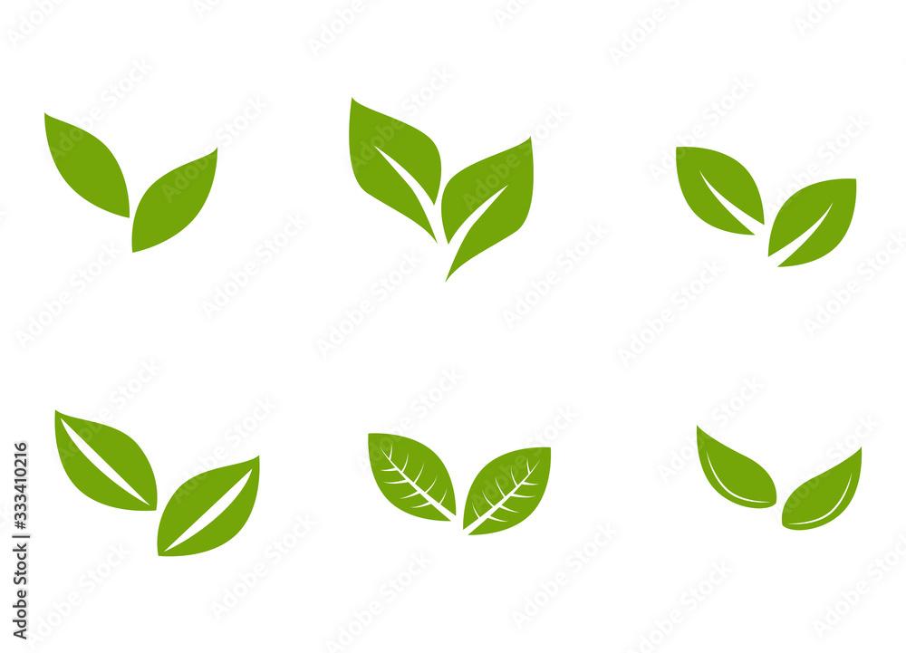 Fototapeta Set of leaf pair with unique styles