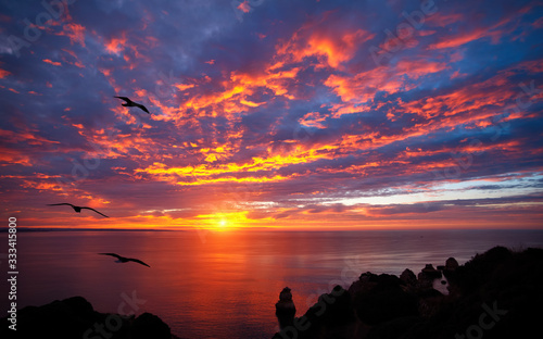 Fotografia, Obraz Stunning sunrise over the ocean with beautiful red clouds and silhouettes of bir