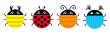 Beetle Lady Bug Set Line. Inse...