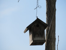 Bird House Feeder Hanging By A...