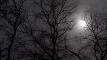 Ominous Picture. Sunlight Brea...