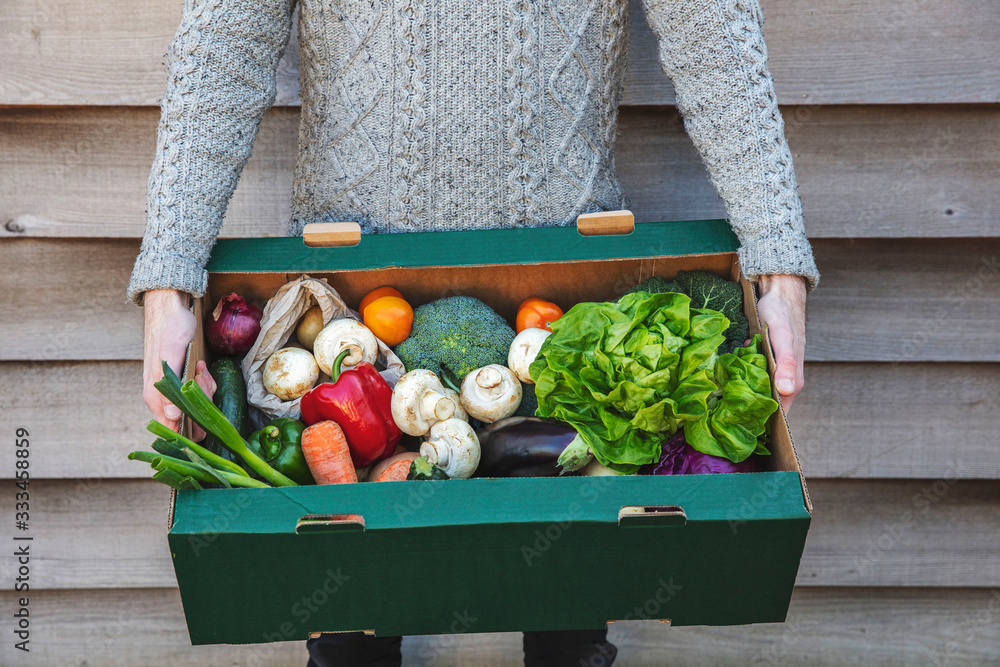Fototapeta A person delivering a fresh box of vegetables. Online organic food shopping