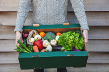 A Person Delivering A Fresh Box Of Vegetables. Online Organic Food Shopping