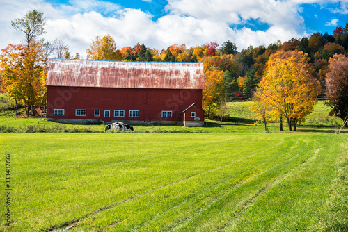 Fotografie, Obraz Red wooden barn in a a grassy field with colourful autumnal trees in background and blue sky