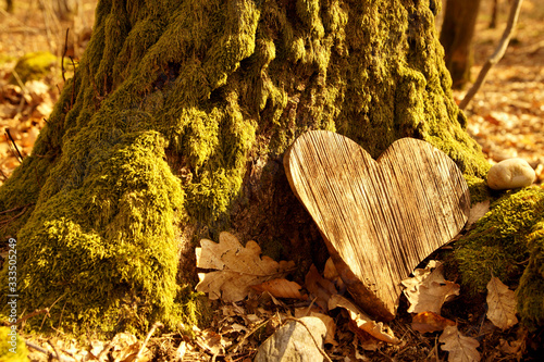 Canvas Print funeral Heart sympathy or wooden funeral heart near a tree