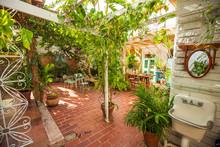 Patio With Tropical Garden