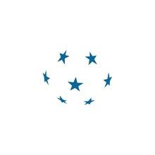 Simple Star Globe Logo