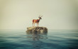 Deer on a rock in the ocean. This is a 3d render illustration .