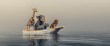 Animlas on boat