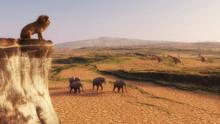Lion Above Safari