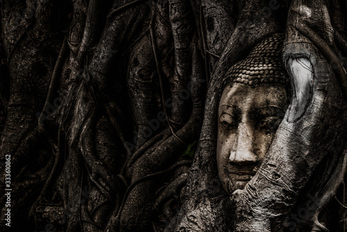 Photo The head of a Buddha image is wrapped around a tree root at Wat Mahathat, Phra Nakhon Si Ayutthaya Province, Thailand