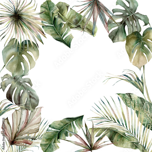 Fototapeta Watercolor tropical border with palm leaves. Hand painted card with monstera, banana and coconut branches isolated on white background. Floral illustration for design, print, fabric or background. obraz