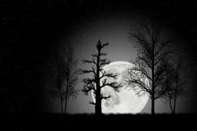 Illustration Depicting A Night...