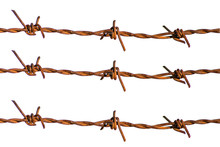 Rusty Barbed Wire With White B...