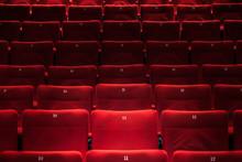 Cinema Auditorium With One Res...