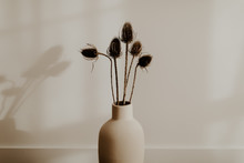 Bunch Of Wild Dried Flower In ...