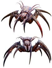 Arachnid Horror Creature 3D Il...