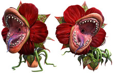 Carnivorous Plant About To Attack 3D Illustration