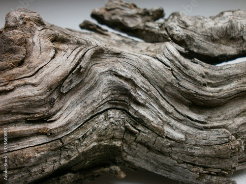 Driftwood/aged wood over white background Canvas Print