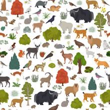 Apine Tundra Biome, Natural Re...