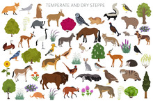 Temperate And Dry Steppe Biome...