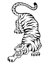 Illustration Of A Tiger. Portrait Of A Wild Crouching Cat. The Picture Of A Predator. Vector Illustration On A White Background. Tattoo.