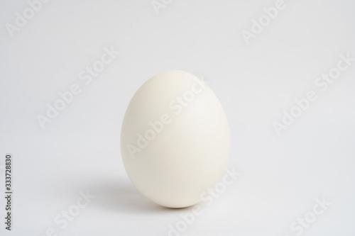 立った卵 Canvas Print