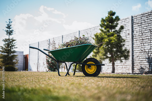 Green wheelbarrow in the garden Wallpaper Mural