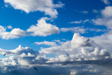 Deep Blue Sky With Clouds And ...