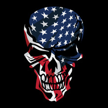 American Flag Skull Isolated V...