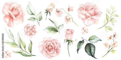 Watercolour floral illustration set Fototapete