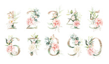 Gold Green Floral Number Set -...
