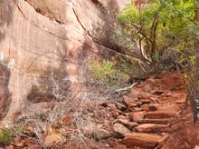 Arizona Red Rock Steps