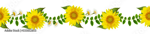 Photo Fresh green leaves of Siberian peashrub, daisies and sunflowers in seamless wave