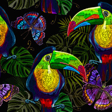 Toucan Birds, Palm Leaves And ...