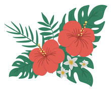 Vector Tropical Composition Wi...