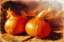 Hokaido Pumpkins On A Wooden T...