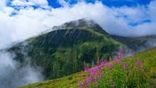 Tour Du Mont Blanc Hike