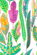 Watercolor Painting Illustration Colorful Leaves Of Croton Plant, Seamless Pattern Of Variegated Leaf Isolated Die Cut With Clipping Path On White Background, Element For Fabric Textiles Wallpaper