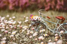 Bicycle Model Set In Flowery M...