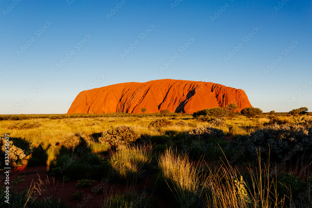 Fototapeta Uluru rock at sunset, Red Center Outback, Northern Territory, Australia. Approved for commercial use