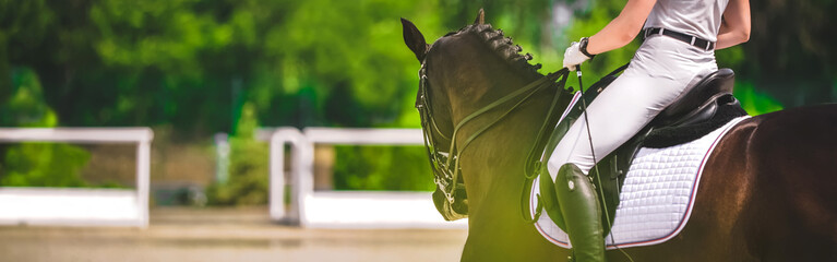 Dressage horse and rider in black uniform closeup. Horizontal banner for website header design. Equestrian sport competition, copy space.
