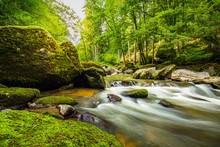 Beautiful River Deep In The Forest, Sunny Spring Summer Weather. Nature Landscape, Rocks And Flowing Water Stream. Tranquil Natural Environment