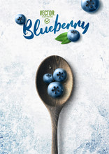 Vector Realistic Blueberry Ill...
