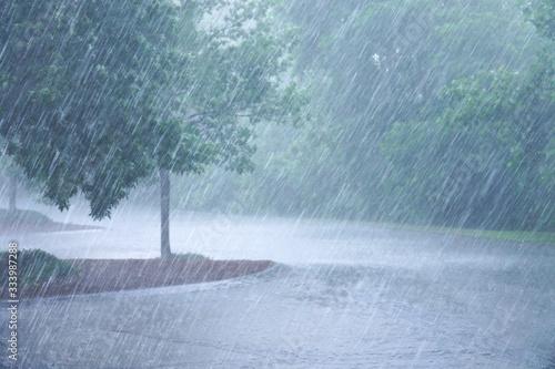 Canvastavla heavy rain and tree in the parking lots